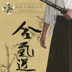 poster aikido